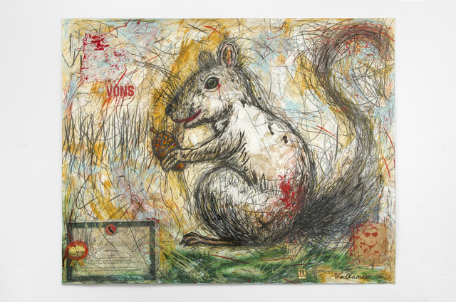 , 'Squirrely Squirrel (Sciurus griseus),' 2016, Edward Cella Art and Architecture