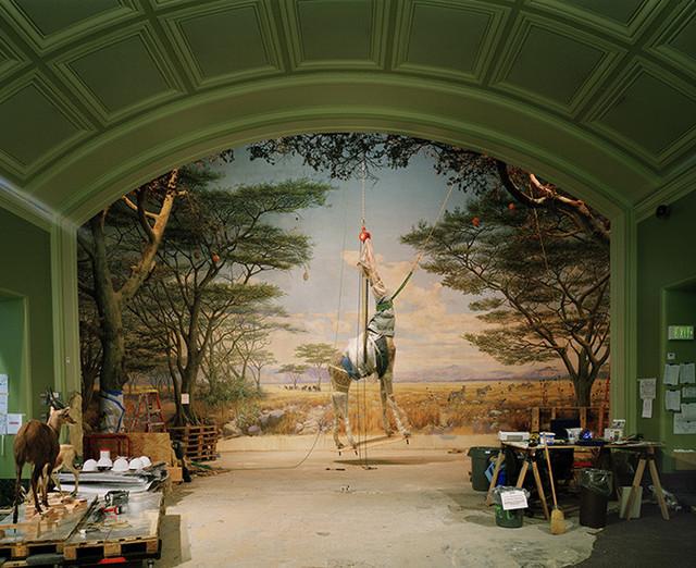 Richard Barnes, 'Giraffe, California Academy of Sciences, SF', 2005, Bau-Xi Gallery