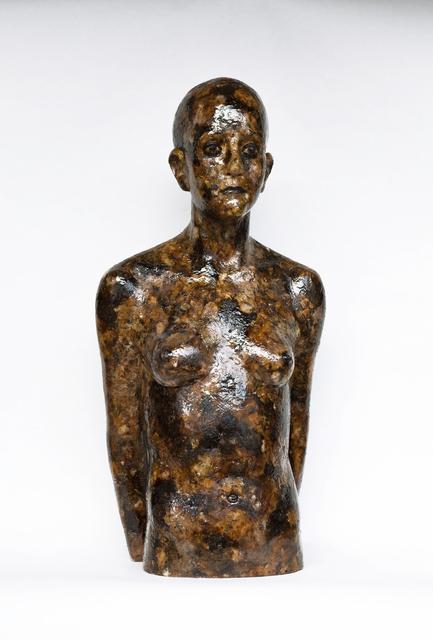 , 'Senza Titolo,' 2013, Terreno Baldío