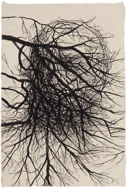 , 'Word of Tree,' 2015, Galerie Anhava