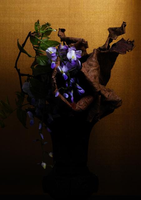 , 'violet,' 2017, Galerie Marie-Robin