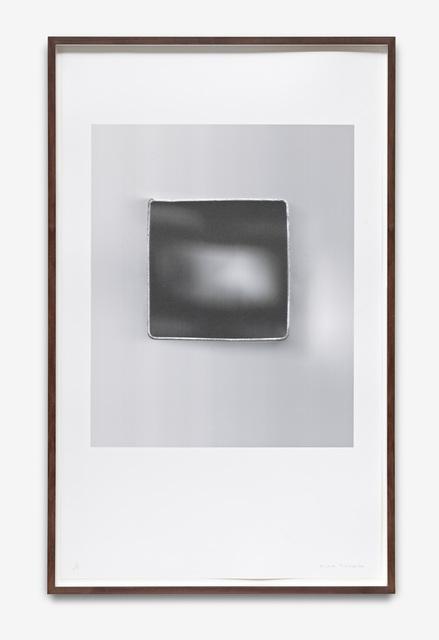 , 'Planarios (01),' 2013, Hamish Morrison Galerie