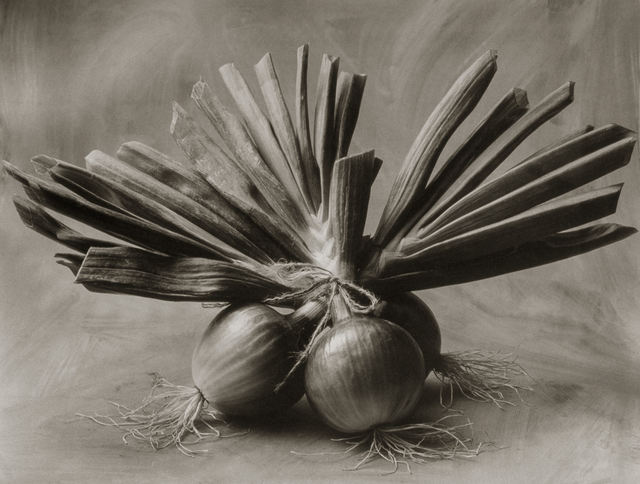 , 'Three Asian Onions,' , Gallery 270
