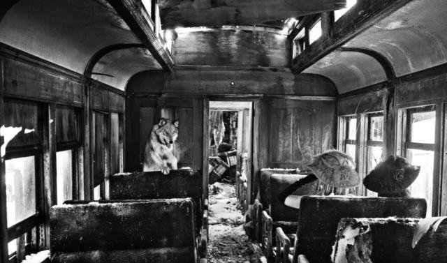 David Yarrow, 'Ride The Ghost Train', 2015, Isabella Garrucho Fine Art