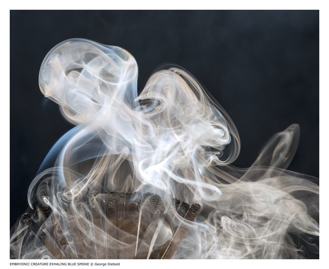 , 'Embryonic Creature Exhaling Blue Smoke,' 2013, J. Cacciola Gallery