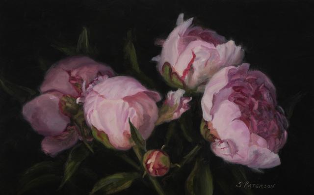 Susan Paterson, 'Pink Peony Study', 2019, Gallery 78