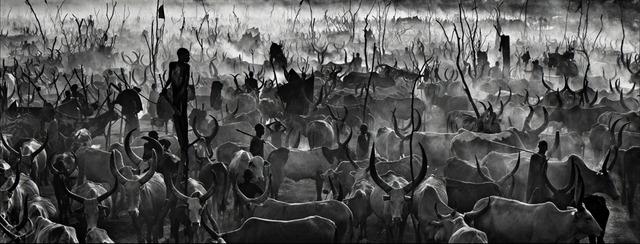David Yarrow, 'Mankind 2', ca. 2015, Samuel Lynne Galleries