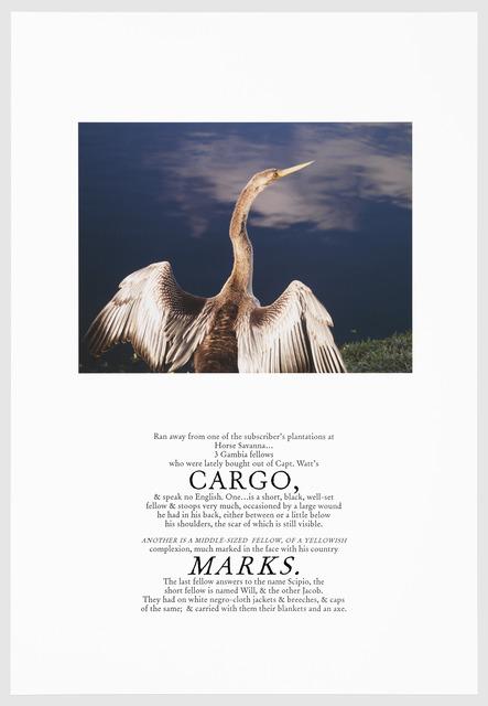 , 'CARGO,' 2016, Arnika Dawkins Gallery