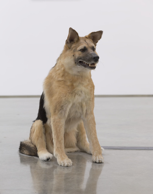 , 'The Dog and the Drop (View 1),' 2013, Gagosian