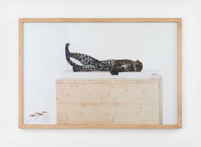 , 'Untitled (leopard),' 2007, Perrotin