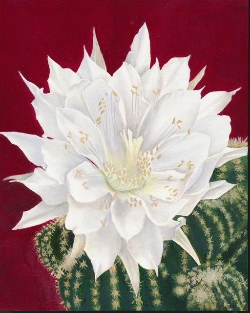 , 'White Cactus Flower,' ca. 2014, Adah Rose Gallery
