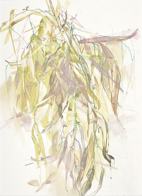 , 'Willow Eucalyptus in Green,' 2015, David Lusk Gallery