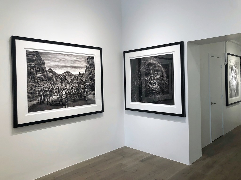 David Yarrow: Off Road & After Hours: The Leader of the Pack, 2019; Kong, 2019; Cara Delevingne, 2017