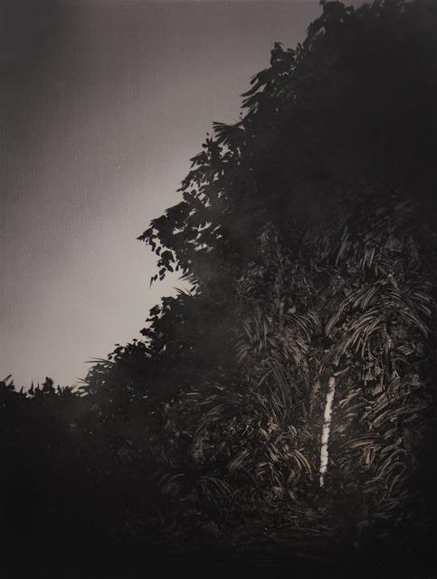 , 'Film Noir,' 2015, Galerie Rianne Groen