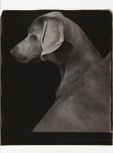 , 'Side Views,' 1998, Huxley-Parlour