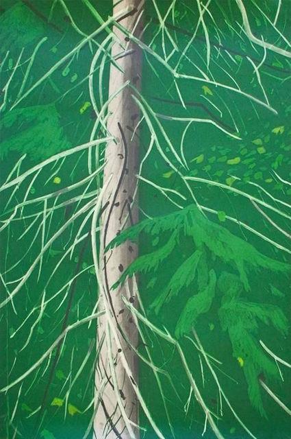 Alex Katz, 'Spruce', 1994, Print, Aquatint, Gregg Shienbaum Fine Art
