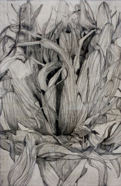 , 'Large Location Series Detail Gymea Lily II ,' 2004, The Art Vault