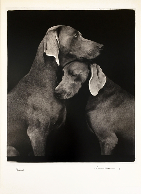 William Wegman, 'Friends', 2010, Hamilton-Selway: Blue-Chip Editions