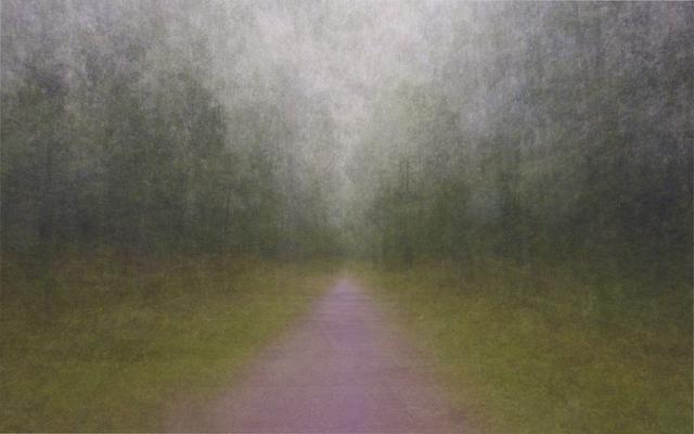 , 'Impressio–Path #14,' 2011, Taik Persons
