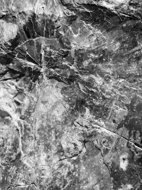 , 'Petrified, Lignum Petrefactum,' 2017, Benrubi Gallery