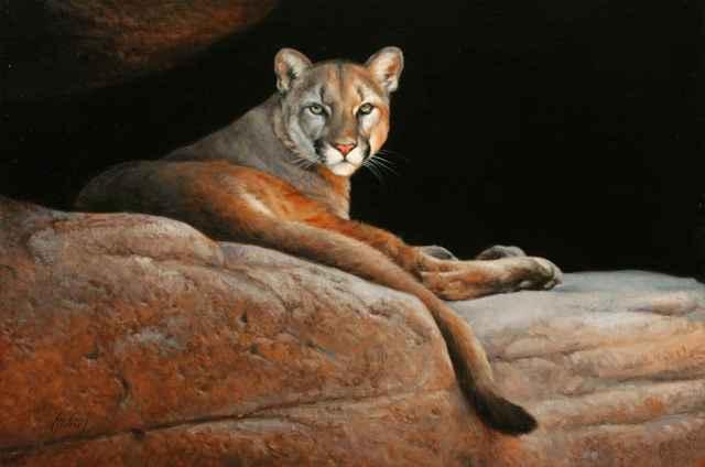 , 'Cougar,' 2018, Sorrel Sky Gallery