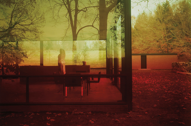 James Welling, 'Untitled #0696 (Glass House),' 2006, Phillips: The Odyssey of Collecting