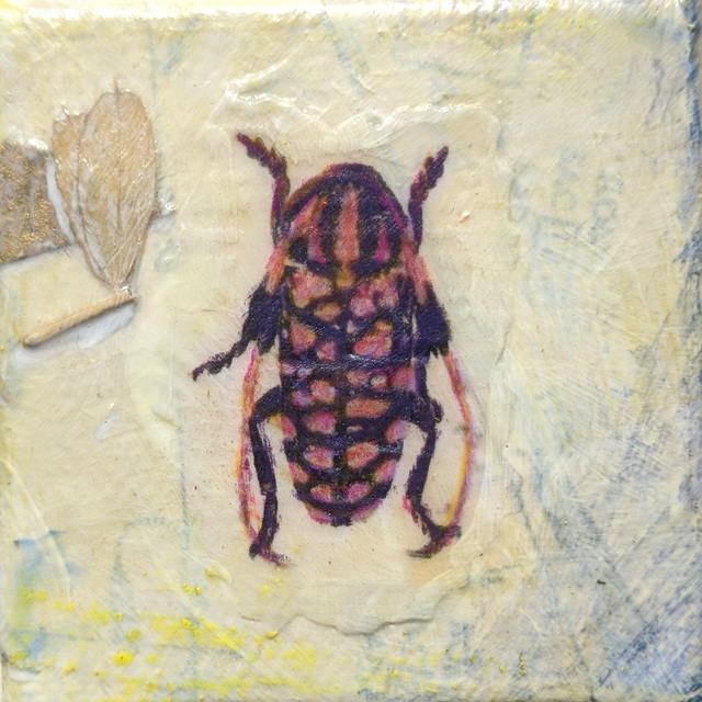 , 'Spotted Beetle #1,' , Sparrow Gallery