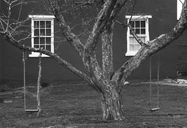 , 'Tree, Swings and Windows, Lancaster, Pennsylvania,' 1966, Gallery 270