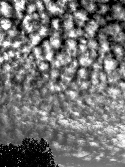 , 'Clouds (for A. St.),' 2011, Japan Art - Galerie Friedrich Mueller