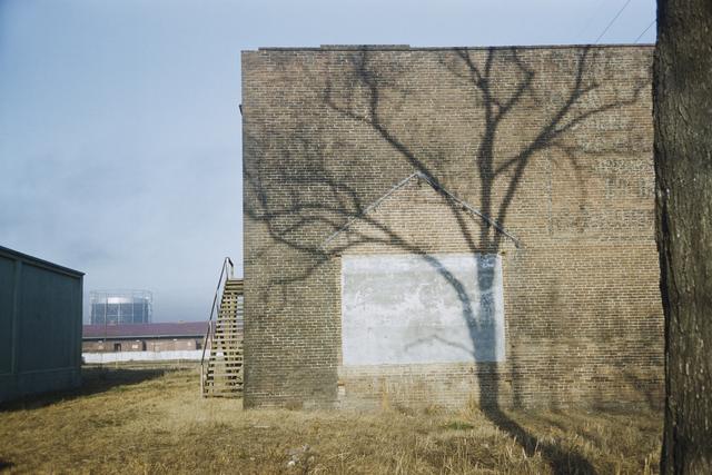 , 'A tree's shadow, Georgia, USA,' 1953, David Hill Gallery