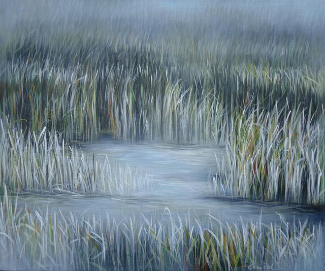 , 'Everglades,' 2011, Rosenbaum Contemporary