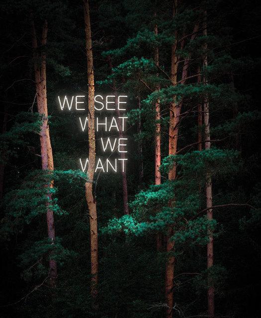 , 'We See What We Want,' , ArtStar