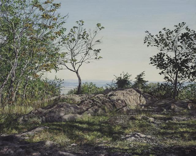 Jeff Gola, 'The Summit at Mt. Norwottuck', 2018, William Baczek Fine Arts