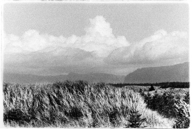 Carol Marino, 'Thunderhead Overhead, Nfld., part 2', 2020, Photography, Gelatin silver print, toned, Corkin Gallery