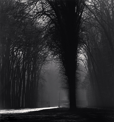Michael Kenna, 'Silver Road, Versailles, France', 1988, Photography, Silver Gelatin Print, Weston Gallery