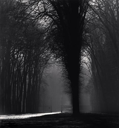 Michael Kenna, 'Silver Road, Versailles, France', 1988, Weston Gallery