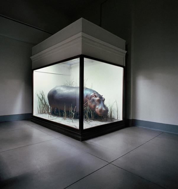 , 'Hippo, Field Art Museum,' 1989, Clark Gallery