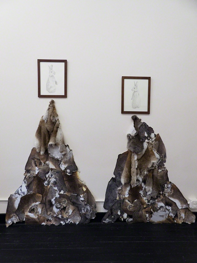 Markel Uriu \ Old World (O. Coniculus Dominion) & (O. Coniculus Decline) 2018 rabbit skins, photo scans, pencil on paper, dimensions variable (approximately 6 feet tall) $1000 (each, including framed drawing)