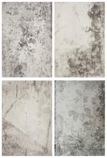 , 'West Lake – Baiyang Pond 01 – 04 ,' 2014, Chambers Fine Art