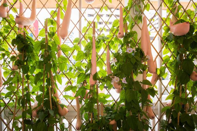 Nguyen Thi Hoai Tho, 'The Loofah Trellis', 2011, Installation, Silicon, composite plastic and fibreglass, Singapore Art Museum (SAM)