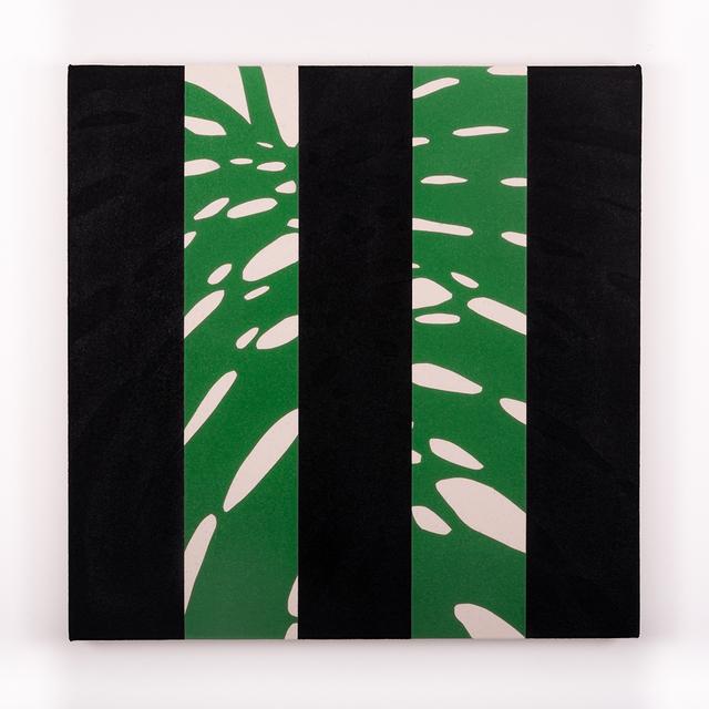 Otto Berchem, 'Monstera Deliciosa (Black)', 2016, Instituto de Visión