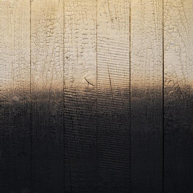 Miya Ando, 'Alchemy (Shou Sugi Ban) Pale Gold 3.19.2.2.1', 2019, Ben Brown Fine Arts