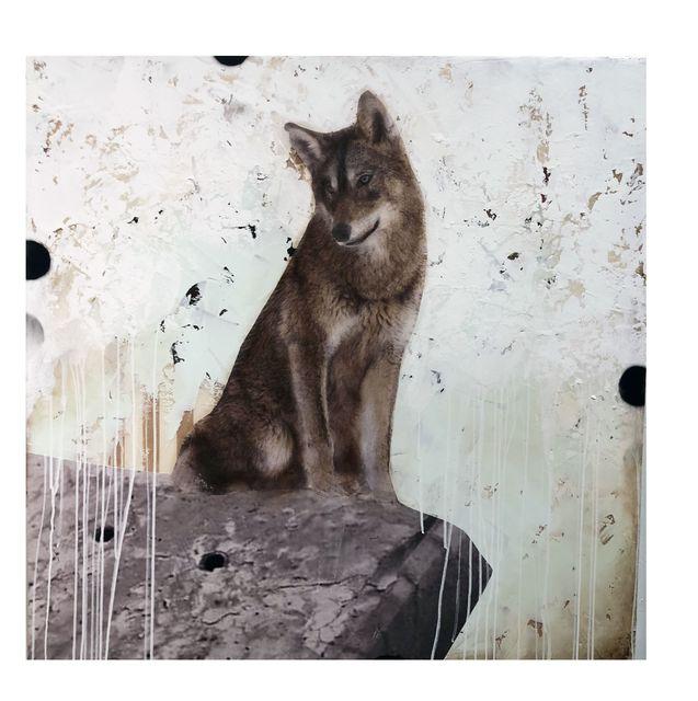 , 'Kane,' , Diehl Gallery