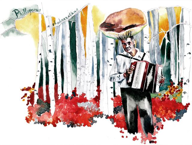 , 'Mushroom-accordionist II,' 2015, SABSAY