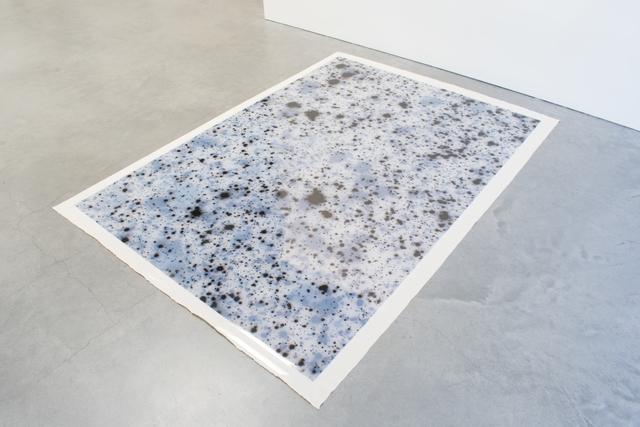 , 'Azimuth 2 (negative),' 2017, Anglim Gilbert Gallery