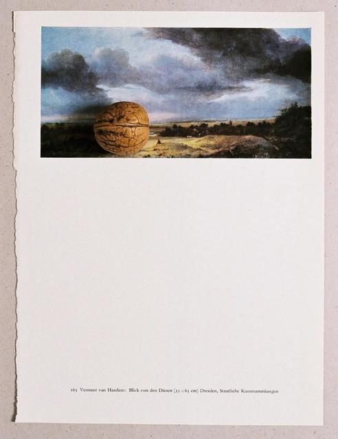 , ' Blick über die Dünen (Vermeer van Haarlem) - Nuß,' 2016, Martin van Zomeren