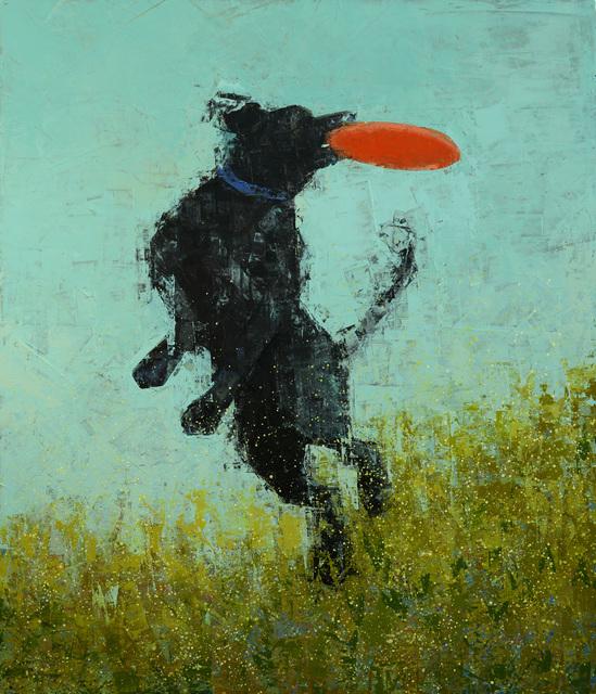 , 'Catch ,' 2017, Rice Polak Gallery