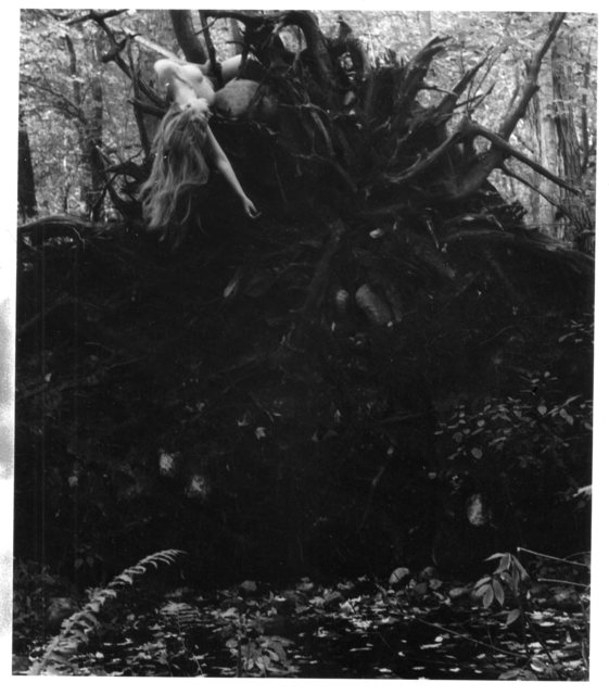 , 'Untitled (self-portrait with tree roots), Andover, Massachusetts ,' 1972-1974, Robert Klein Gallery