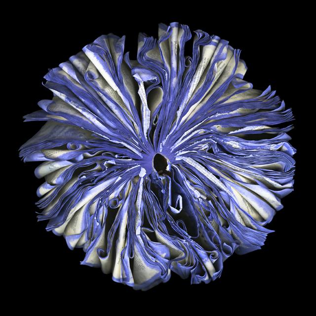 , 'Lilac,' 2013, Susan Spiritus Gallery