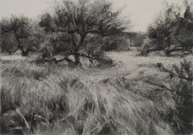 , 'Orchard #9,' , Dowling Walsh